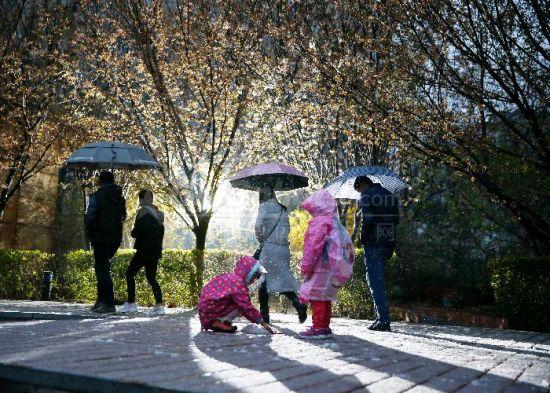 入春的北京发布暴雪蓝色预警