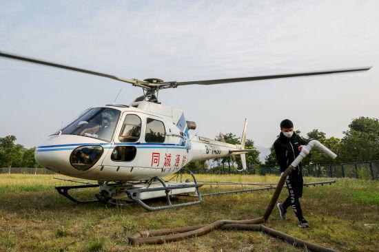 北京开展飞机防治林业有害生物 今夏以美国白蛾为主